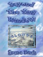 Beyond The Tiny Window