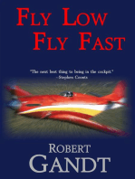 Fly Low Fly Fast
