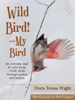 Wild Bird!