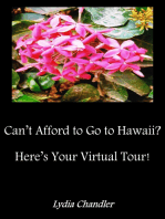 Can't Afford To Go To Hawaii? Here's Your Virtual Tour!