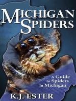 Michigan Spiders