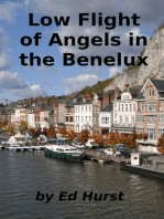 Low Flight of Angels in the Benelux