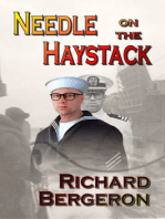 Needle on the Haystack
