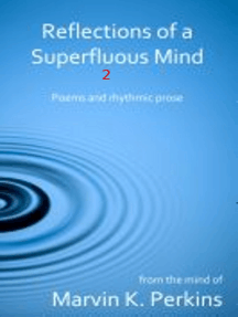 Reflections of a Superfluous Mind 2