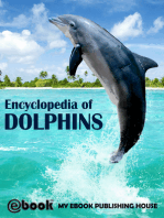 Encyclopedia of Dolphins