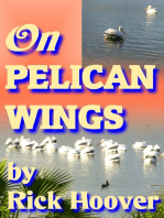 On Pelican Wings