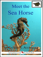 Meet the Sea Horse