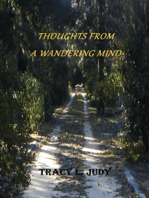 Thoughts From A Wandering Mind