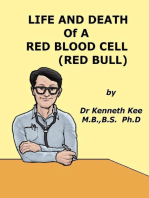 Life and Death of a Red Blood Cell (Red Bull)