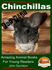 Chinchillas: For Kids - Amazing Animal Books For Young Readers
