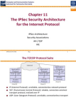 ipsec-basic-concepts-in-s Free download PDF and Read online