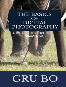 The Basics of Digital Photography: A Journey Through The Fundamentals