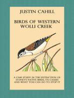 Birds of Western Wolli Creek