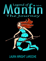 Legend of Manfin, The Journey, Book 1
