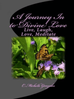 A Journey In to Divine Love