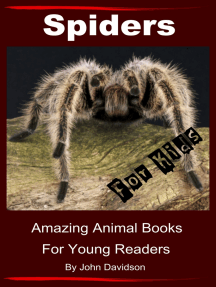 Spiders for Kids: Amazing Animal Books for Young Readers