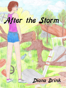 After the Storm