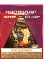 Echocardiography Beyond the First Clinical Scenarios