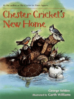 Chester Cricket's New Home