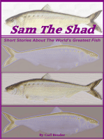 Sam the Shad