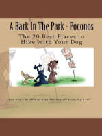 A Bark In The Park-Poconos