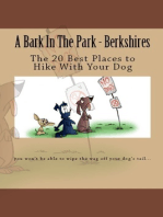 A Bark In The Park-Berkshires