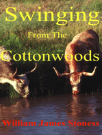 Swinging From the Cottonwoods