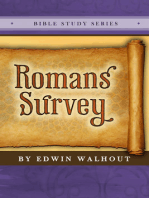 Romans Survey