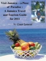 Diving Into Jamaica