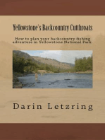 Yellowstone's Backcountry Cutthroats