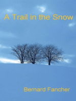 A Trail in the Snow