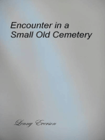Encounter in a Small Old Cemetery