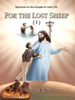 Sermons on the Gospel of John(VI) - For The Lost Sheep(I)