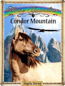 Condor Mountain