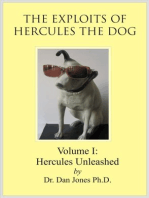 Hercules the Dog