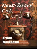 Next-doors' Cat