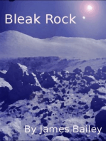 Bleak Rock
