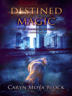 Destined Magic, A Witch Guardian Romance