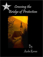 Crossing the Bridge of Protection