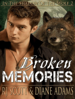 Broken Memories