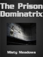 The Prison Dominatrix (Femdom)