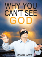 Why You Can't See God