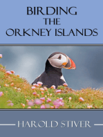 Birding the Orkney Islands