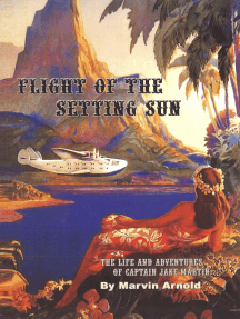 Flight Of The Setting Sun
