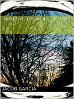 Waking Entropy