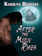 After the Moon Rises