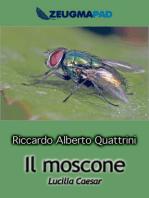 Il moscone (Lucilia Caesar)