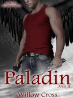 Paladin (A Higher Calling Novella)