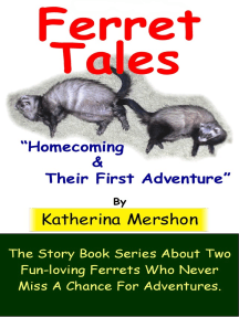 Ferret Tales: Story Book 1
