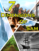 7 Dimensions Of Sam